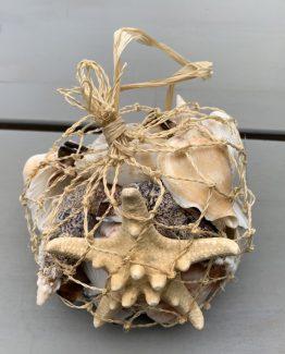 Netz mit Muscheln und seestern (Medium)